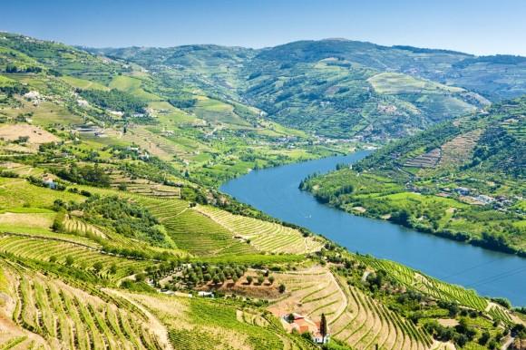 Best wine travel destinations proposte da Opodo per degustare i migliori vini del mondo
