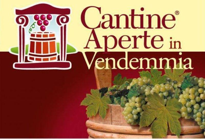 Cantine Aperte in Vendemmia: settembre e ottobre tra vino, sapori e cultura