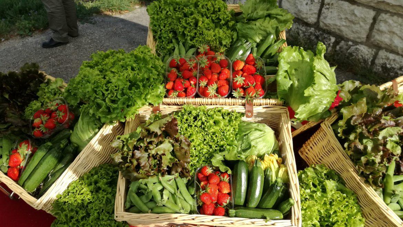 Nel podere La Cattedra di Roana solo frutta e verdura biologiche