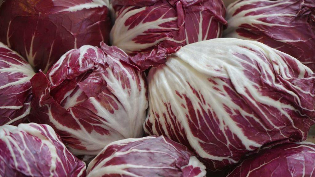 Al via la sagra del radicchio a Bosco Mesola: ricette e proprietà di questo ortaggio prelibato