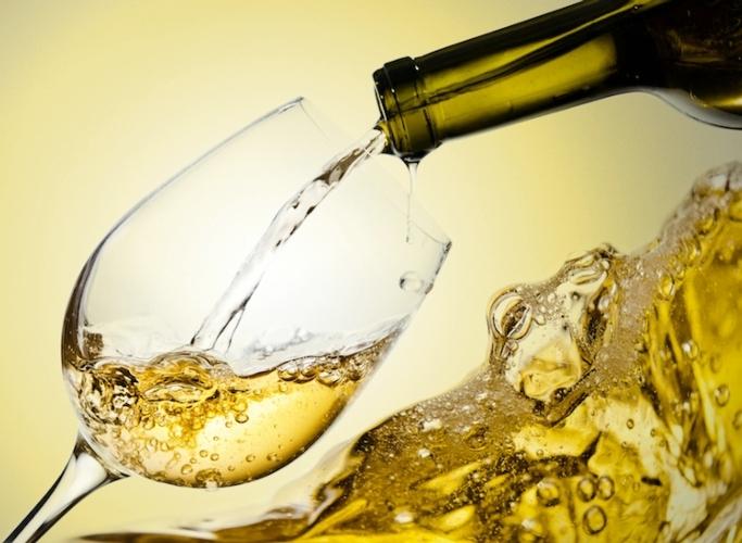 Vini e champagne biologici